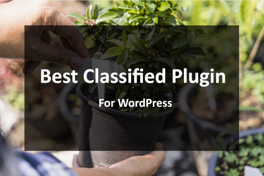 Best Classified Plugin For WordPress